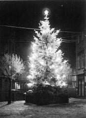 der erste oeffentliche Weihnachtsbaum in Halberstadt